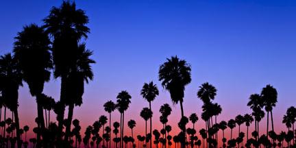Home: Ventura